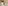 A lone penguin looks over its shoulder
