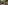A young brunette female guide is talking to a group of people including several children. She is wearing a grey long sleeve shirt with beige pants and matching akubra hat with decorative pins attached to it. She is holding fact sheets in one hand and has the other hand raised, in mid conversation with the group. In the background is beautiful green bushland and green trees against the blue sky.