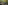 Two young boys and one girl play together on a large rock, surrounded by a canopy of fern trees. The young girl is wearing a grey t-shirt with her hair in a ponytail as is turned away from the camera. One boy is brunette and is wearing a superman t-shirt, whilst the other boy is blond and wearing a batman t-shirt. All the kids are sitting on the rock and the boys are smiling.